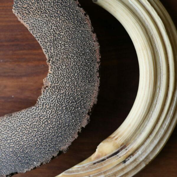 Détail matériaux corne et palmier
