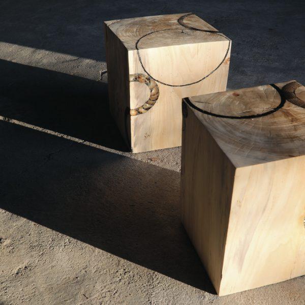 Cube savane
